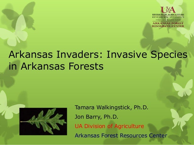 Arkansas Invaders: Invasive Species in Arkansas Forests Tamara Walkingstick, Ph.D. Jon Barry, Ph.D. UA Division of Agricul...