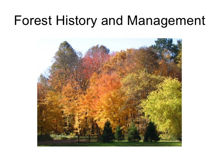 Forest History and Management