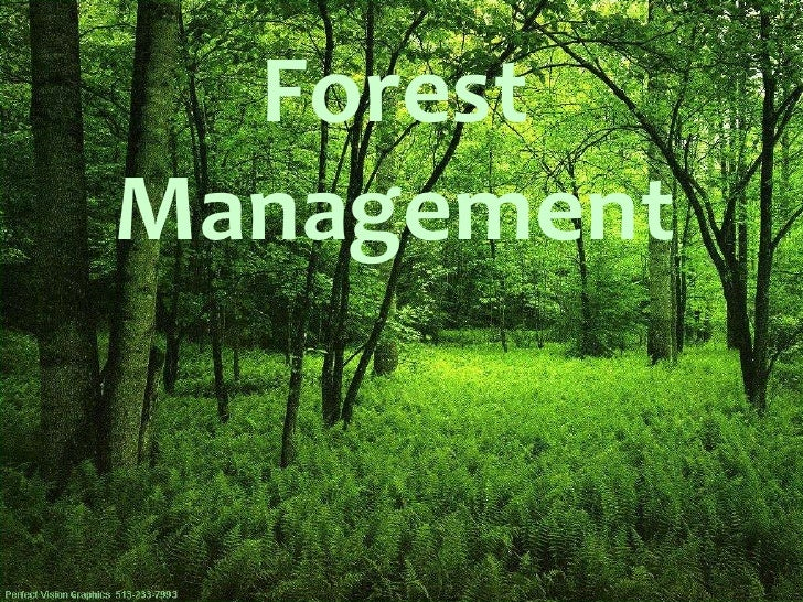 importance of forest management pdf