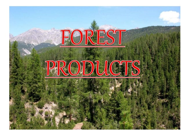 MEANING OF FOREST A forest (also called a wood, woodland, wold, weald, wellard or holt ) is an area with a high density o...