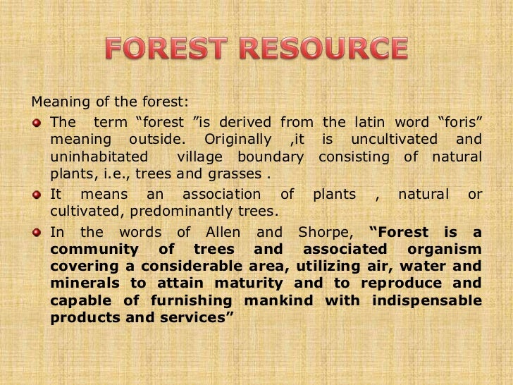 Forest essay in english