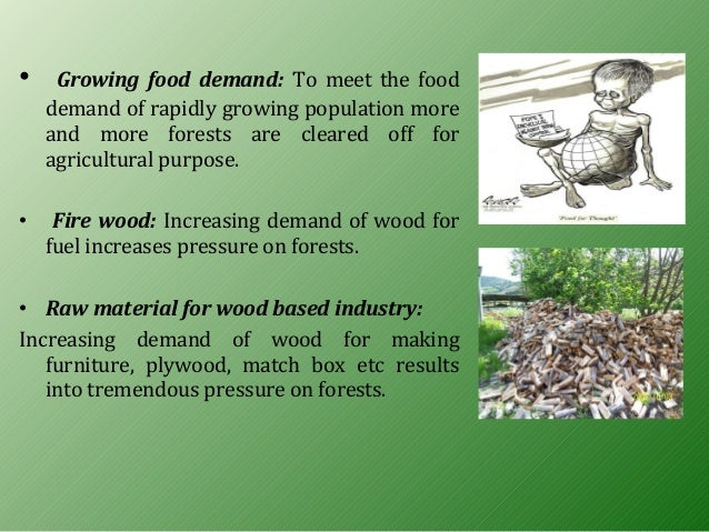 the causes and effects of deforestation Keywords: effects of deforestation, causes of deforestation, solution to deforestation the word deforestation is used to describe the process of cutting down and burning the trees in forest.