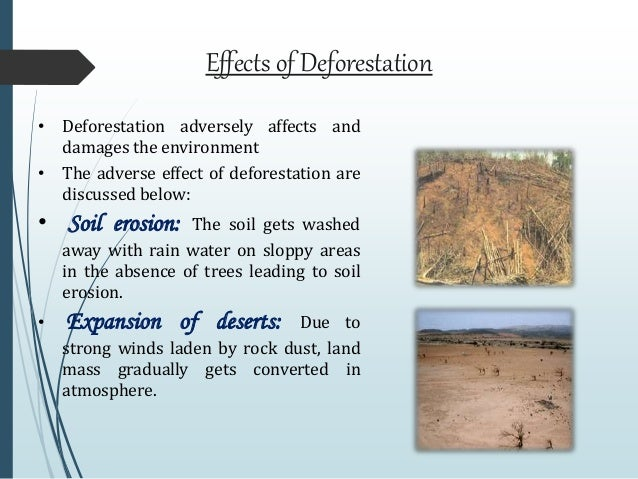 agriculture in deforestation and desertification environmental sciences essay Lesson 4: droughts and desertification  on agriculture throughout the world, and especially in developing nations  deforestation and environmental degradation.