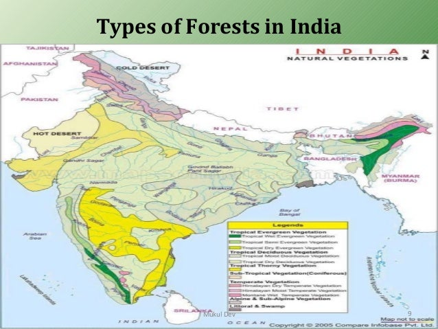 how many types of forest in india