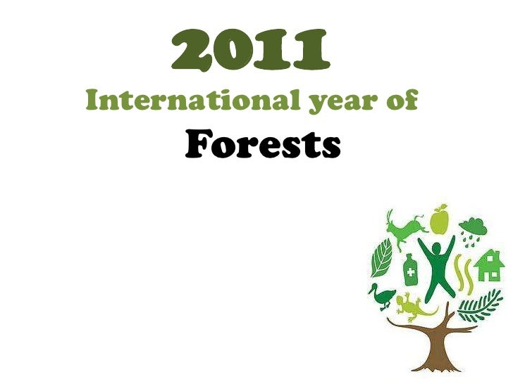 2011<br />International year of<br />Forests<br />