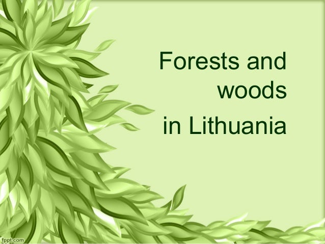 Forests and woods in Lithuania
