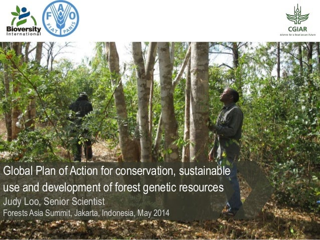 Global Plan of Action for conservation, sustainable use and development of forest genetic resources Judy Loo, Senior Scien...