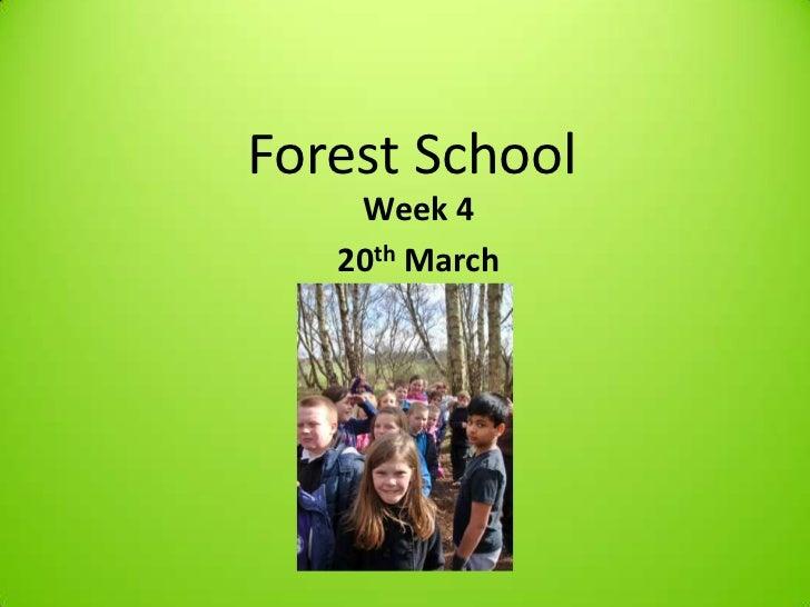 Forest School    Week 4   20th March