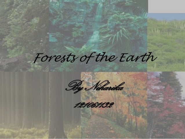 Forests of the Earth By Niharika 121061132
