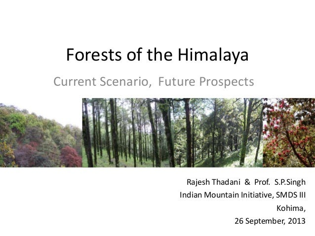 Forests of the Himalaya Current Scenario, Future Prospects Rajesh Thadani & Prof. S.P.Singh Indian Mountain Initiative, SM...