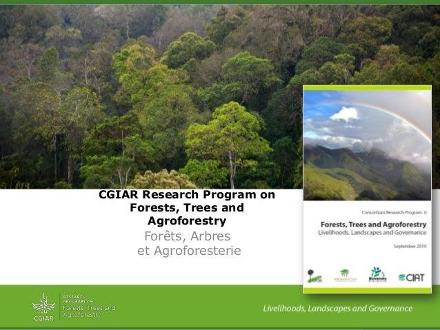 Forêts, Arbreset AgroforesterieCGIAR Research Program onForests, Trees andAgroforestry