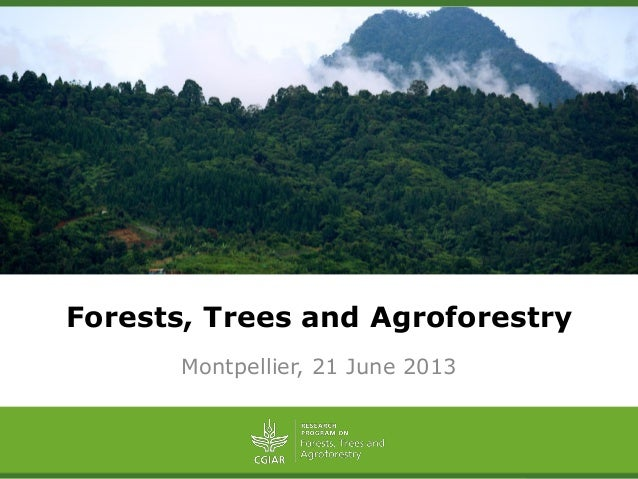 Forests, Trees and AgroforestryMontpellier, 21 June 2013
