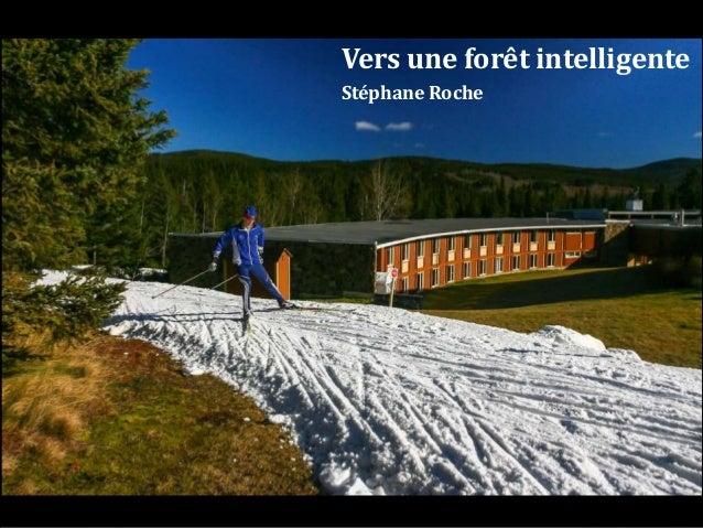 Vers une forêt intelligente Stéphane Roche