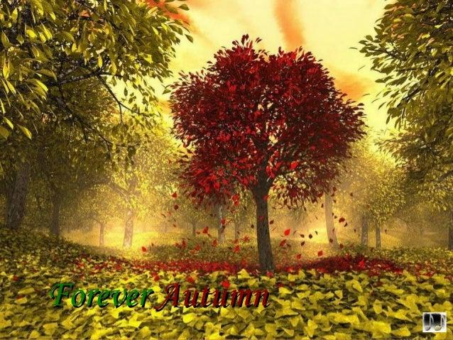 ForeverForever AutumnAutumn