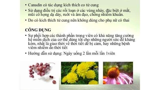 Forever echinacea supreme 28 images forever echinacea for Gemelli diversi tu corri testo