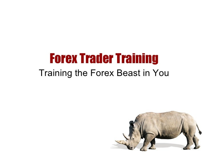 Forex Trader Training Training the Forex Beast in You
