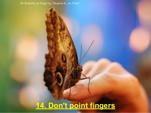 14. Don't point fingers Mr Butterfly on finger by Tatyana A., on Flickr