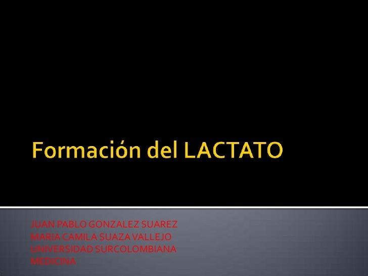 Formación del LACTATO<br />JUAN PABLO GONZALEZ SUAREZ<br />MARIA CAMILA SUAZA VALLEJO<br />UNIVERSIDAD SURCOLOMBIANA<br />...
