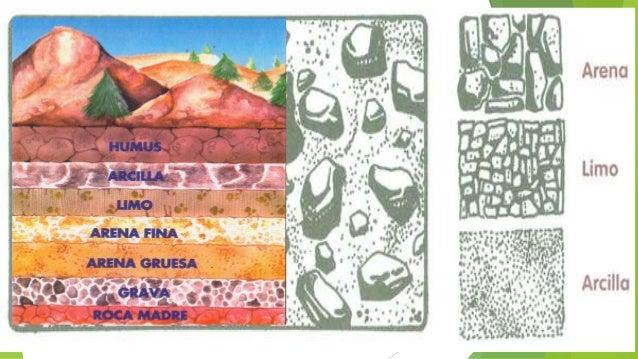 Formaci n del suelo por michael quitiaquez for Formacion de los suelos