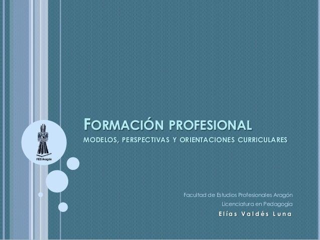 FORMACIÓN PROFESIONAL  MODELOS, PERSPECTIVAS Y ORIENTACIONES CURRICULARES  Facultad de Estudios Profesionales Aragón Licen...