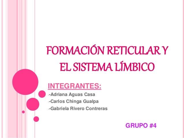 FORMACIÓN RETICULAR Y EL SISTEMA LÍMBICO INTEGRANTES: --Adriana Aguas Casa --Carlos Chinga Gualpa --Gabriela Rivero Contre...