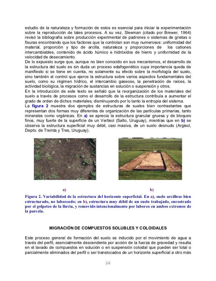 Formacion de los suelos for Formacion de los suelos