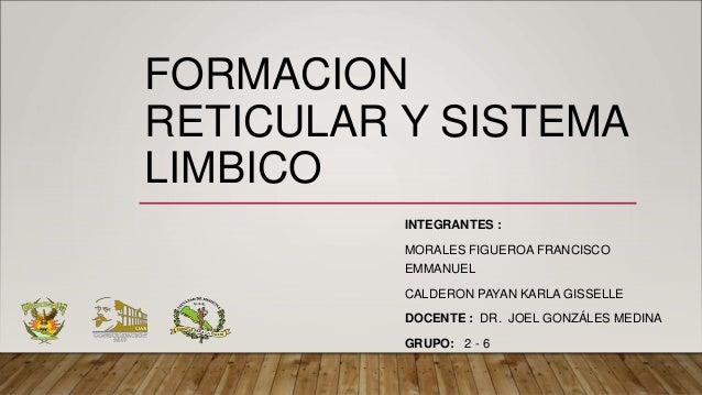 FORMACION RETICULAR Y SISTEMA LIMBICO INTEGRANTES : MORALES FIGUEROA FRANCISCO EMMANUEL CALDERON PAYAN KARLA GISSELLE DOCE...