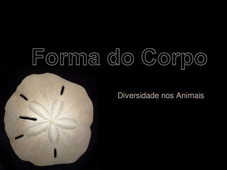 Forma do Corpo<br />Diversidade nos Animais<br />