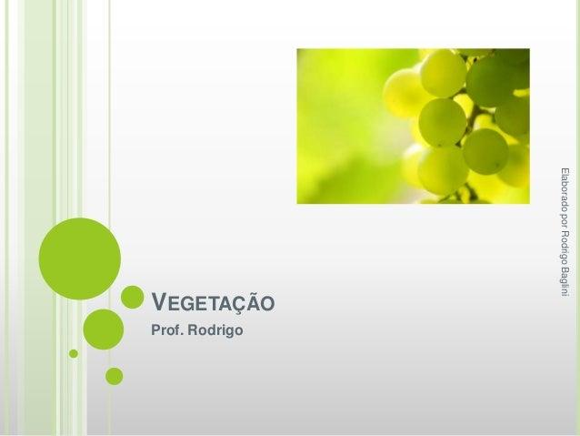 VEGETAÇÃO Prof. Rodrigo ElaboradoporRodrigoBaglini
