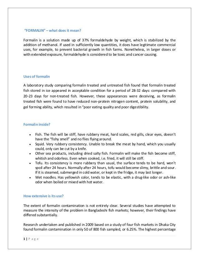 ideal city essay