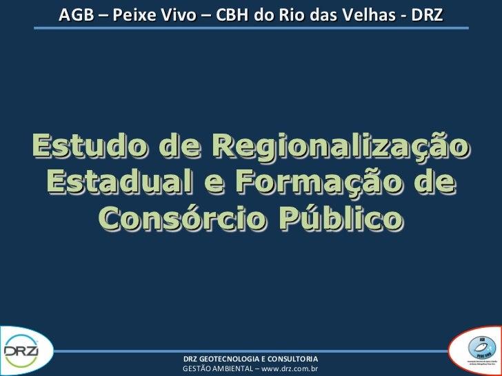 AGB – Peixe Vivo – CBH do Rio das Velhas -‐ DRZ                                        Estudo d...