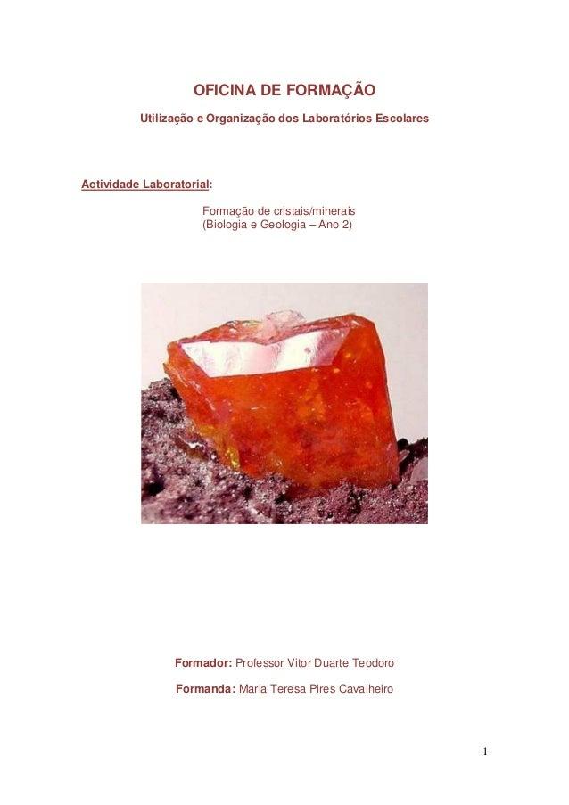 1 OFICINA DE FORMAÇÃO Utilização e Organização dos Laboratórios Escolares Actividade Laboratorial: Formação de cristais/mi...