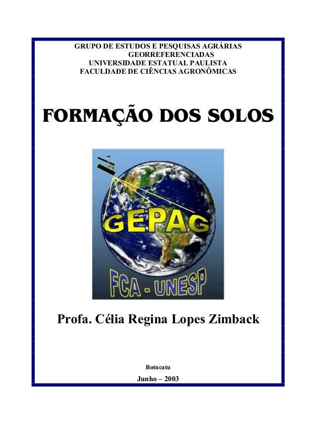 GRUPO DE ESTUDOS E PESQUISAS AGRÁRIAS GEORREFERENCIADAS  UNIVERSIDADE ESTATUAL PAULISTA  FACULDADE DE CIÊNCIAS AGRONÔMICAS...
