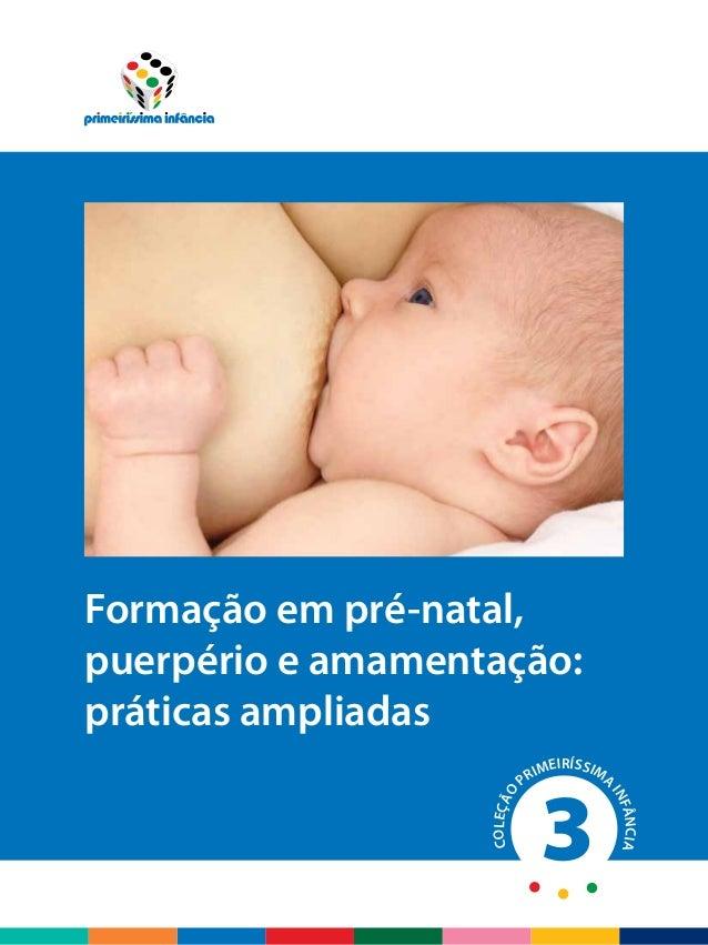 COLEÇÃO PRIMEIRÍSSIMA INFÂNCIAFormação em pré-natal, puerpério e amamentação: práticas ampliadas