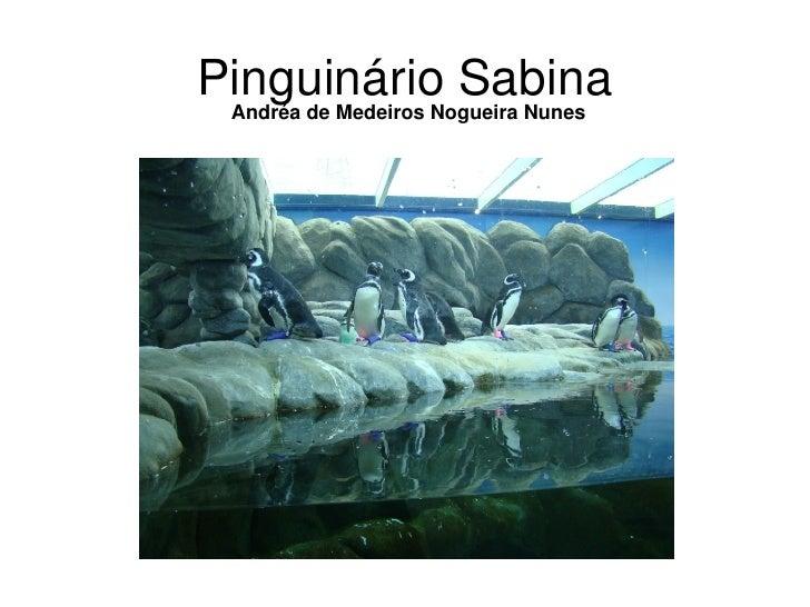 PinguinárioSabina  AndréadeMedeirosNogueiraNunes