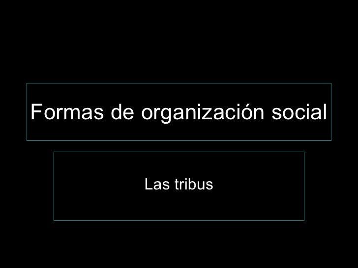 Formas de organización social Las tribus