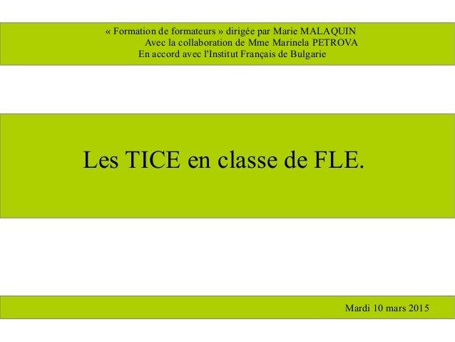 Les TICE en classe de FLE. « Formation de formateurs » dirigée par Marie MALAQUIN Avec la collaboration de Mme Marinela PE...