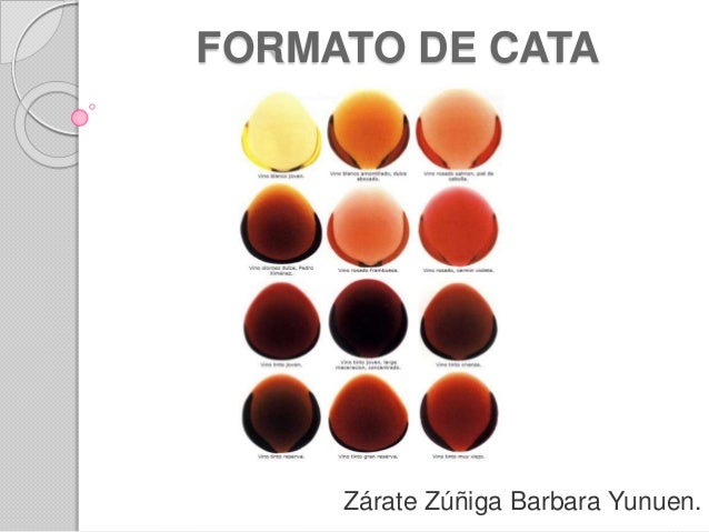 FORMATO DE CATA Zárate Zúñiga Barbara Yunuen.