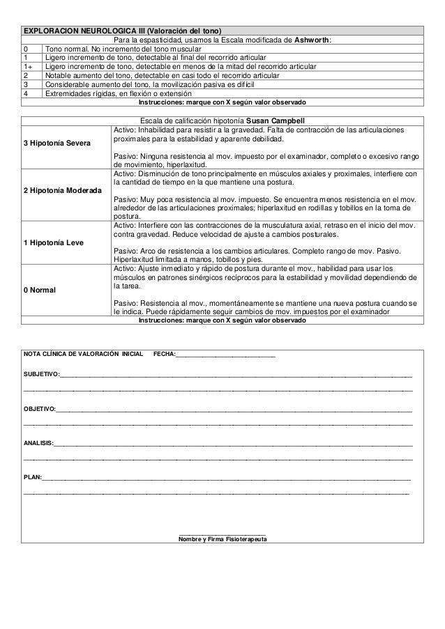 Formato de valoracion para fisioterapeutas