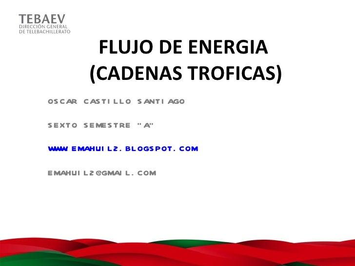 """FLUJO DE ENERGIA         (CADENAS TROFICAS)OS CAR CAS TI L L O S ANTI AGOS EXTO S EMES TRE """" A""""W W EMAHUI L 2 . BL OGS POT..."""
