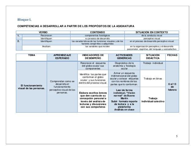 Formato planeacion modelo por competencias educacion especial (1)
