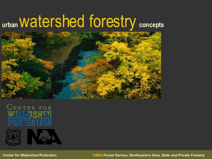 urban   watershed forestry   concepts