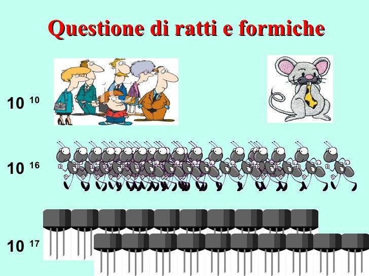 Questione di ratti e formiche 10  10 10  16 10  17