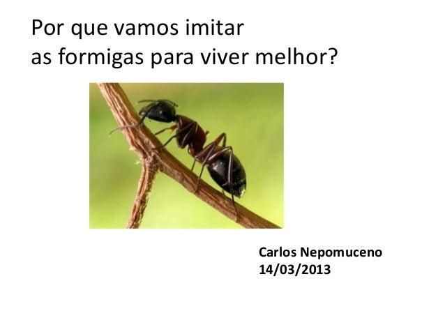 Por que vamos imitaras formigas para viver melhor?                      Carlos Nepomuceno                      14/03/2013