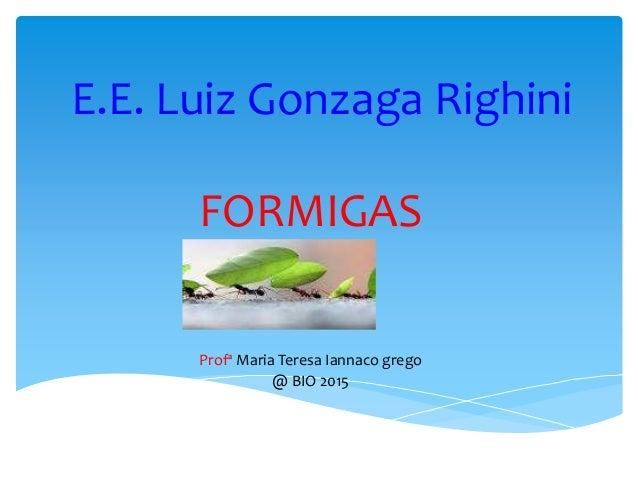 E.E. Luiz Gonzaga Righini FORMIGAS Profª Maria Teresa Iannaco grego @ BIO 2015