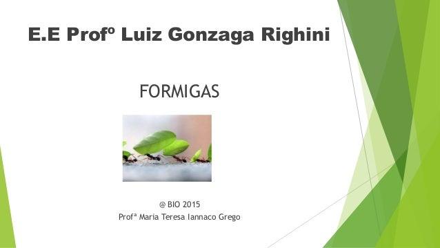 E.E Profº Luiz Gonzaga Righini FORMIGAS @ BIO 2015 Profª Maria Teresa Iannaco Grego