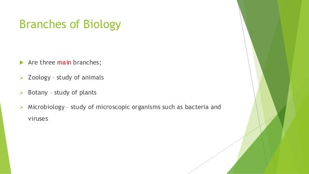 three branches of biology