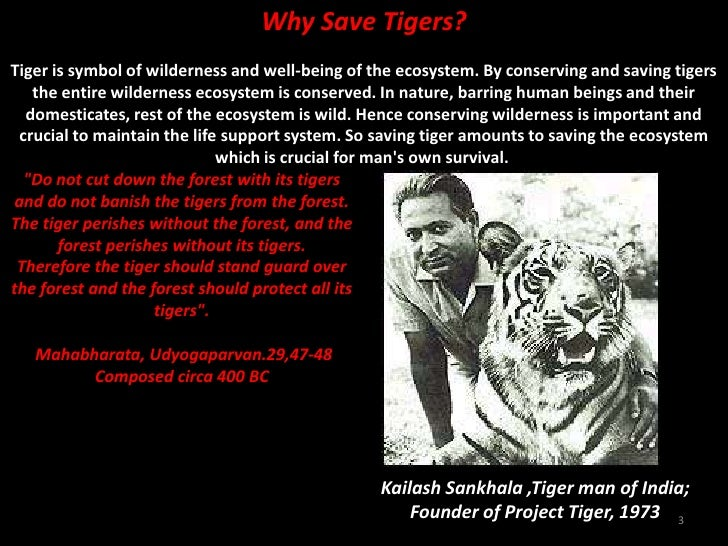 For Moses Pereira-Why Save the Tiger? Slide 3