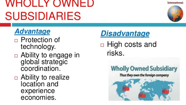 wholly owned subsidiary advantages and disadvantages pdf