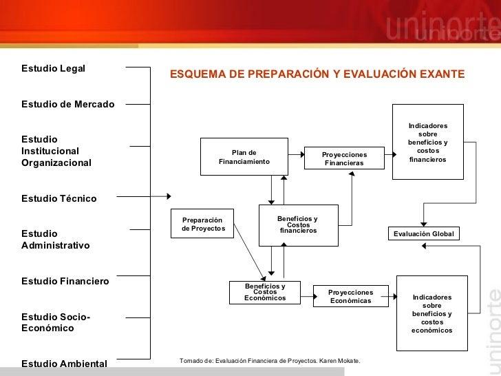 ESQUEMA DE PREPARACIÓN Y EVALUACIÓN EXANTE Tomado de: Evaluación Financiera de Proyectos. Karen Mokate.  Estudio Legal Est...